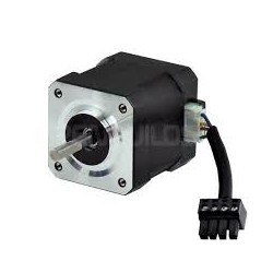 Stepper Motors -12v